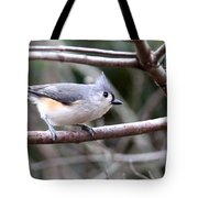 Img_4672 - Tufted Titmouse Tote Bag