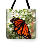 Img_5284-001 - Butterfly Tote Bag