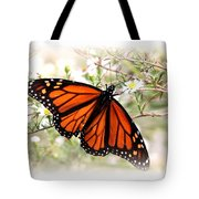 Img_5290-004 - Butterfly Tote Bag
