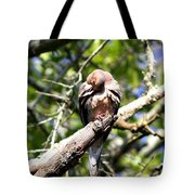 Img_7276 - Mourning  Dove Tote Bag