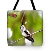 Img_7436-020 - Ruby-throated Hummingbird Tote Bag