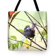 Img_7541-002 - White-throated Sparrow Tote Bag