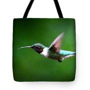 Img_7668-003 - Ruby-throated Hummingbird Tote Bag