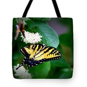 Img_8712-001 - Swallowtail Butterfly Tote Bag