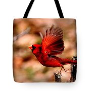 Img_8892 - Northern Cardinal Tote Bag