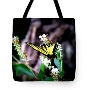 Img_8960 - Tiger Swallowtail Butterfly Tote Bag