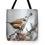 Img_9256 - Carolina Wren Tote Bag