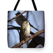 Img_9896 - Yellow-rumped Warbler Tote Bag