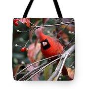 Img_9971-023 - Northern Cardinal Tote Bag