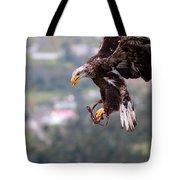 Immature Bald Eagle Landing Tote Bag