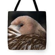 Immature Flamingo Tote Bag