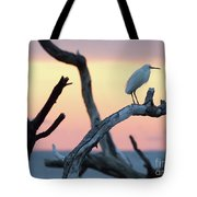 Immature Heron Glow Tote Bag