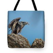 Immature Turkey Vulture 3 Tote Bag