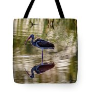 Immature White Ibis At Sunrise Tote Bag