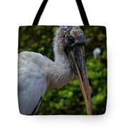 Immature Wood Stork Tote Bag