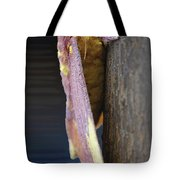 Imperial Moth Profile Tote Bag