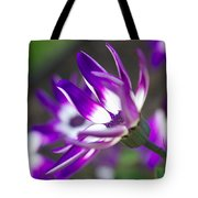 Impertinent Tote Bag