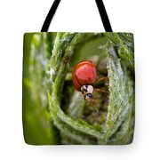Imposter Ladybug Tote Bag