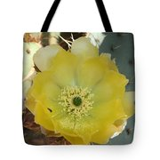 Impressive Beauty Tote Bag