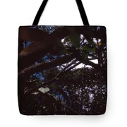 In A Brazilian Forest Tote Bag