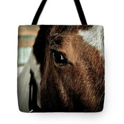 In A Horse's Eye Tote Bag