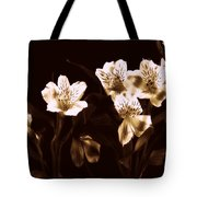 In A Line Tote Bag by Diane Reed