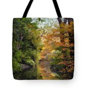 In A Mirror Tote Bag