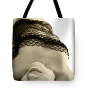 In A Net Tote Bag