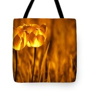 In A Perfect World Tote Bag