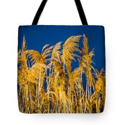 In And Out Of Focus Tote Bag