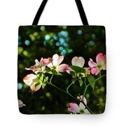 In Another Spring 2013 002 Tote Bag
