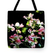 In Another Spring 2013 004 Tote Bag