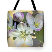 In Apple Blossom Time Tote Bag