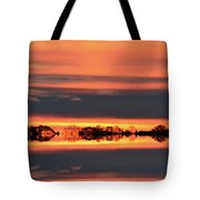 In Color Three  Tote Bag