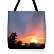 In Emptiness... Tote Bag