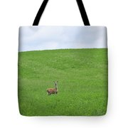 In Fields Of Green Tote Bag