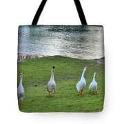 In First Place Tote Bag