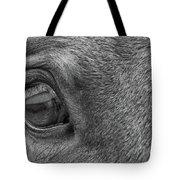 In Italian Cavallo View Tote Bag