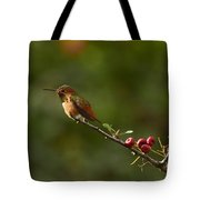 In Line With The Branch I Tote Bag