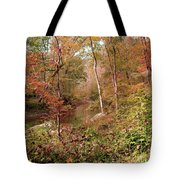 In Love With Autumn Tote Bag