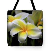 In Love With Butterflies Plumeria Flower Cecil B Day Butterfly Center Art Tote Bag