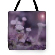 In Mushroom Land  Tote Bag