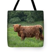 In Need Of A Haircut Tote Bag