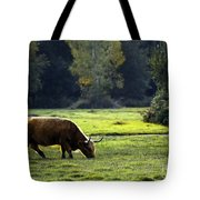 in New Forest Tote Bag