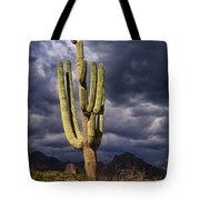 In Search Of That Perfect Saguaro  Tote Bag