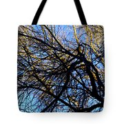 In Sunlight And In Shadow Tote Bag