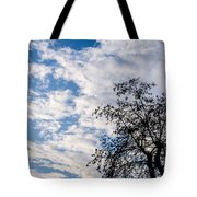 In That Quiet Earth - At Sunset Tote Bag