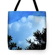 In The Anteroom Of The Mountain Gods 001 Tote Bag