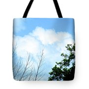 In The Anteroom Of The Mountain Gods 002 Tote Bag