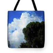 In The Anteroom Of The Mountain Gods 005 Tote Bag